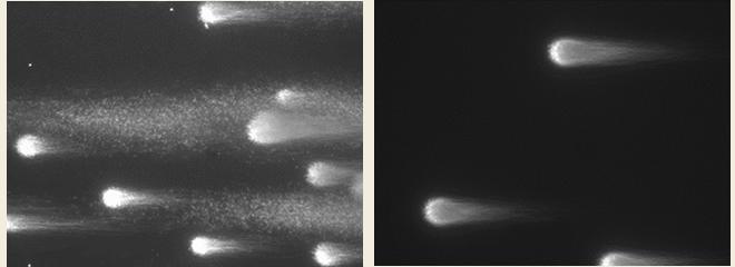 精子細胞内DNA検査