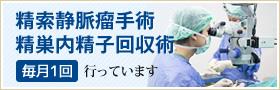 精検索静脈瘤手術・精巣内精子回収術